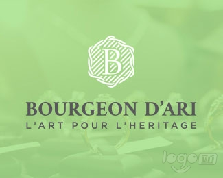 Bourgeon D'ari logo设计欣赏
